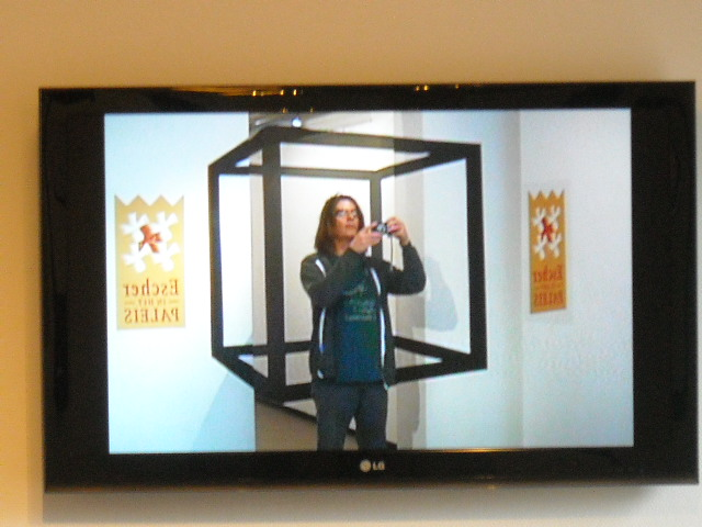 Me encased in an optical illusion at the Escher Museum.